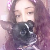 Hello! My name is Jessica Muniz I am a 16 year old with experience and I love animals. Im available for pet sitting,walking.