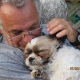 For Hire: Professional Pet Service Provider in Valencia