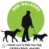 Dog Walker in Chicago