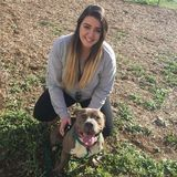 Energetic and friendly college student offering pet sitting and dog walking