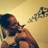 Dog Walker, Pet Sitter in Salt Lake City