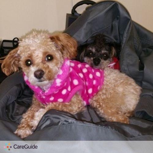 Pet Care Provider Patricia Hernandez's Profile Picture