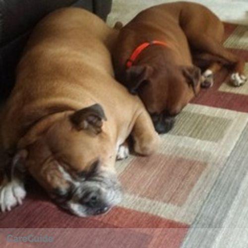 Pet Care Provider Briana D's Profile Picture
