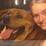 Dog Walker in Lancaster