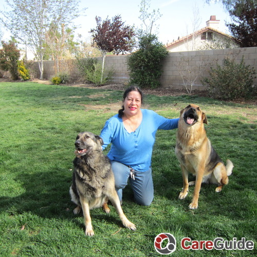 Pet Care Provider Katia Karloff's Profile Picture