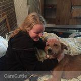 Dog Walker in Blacksburg