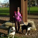 Dog Walker, Pet Sitter in Hayward