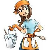 Available: Seasoned Housecleaner in Bloomington