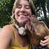Your pets new best friend!