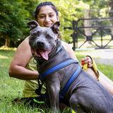 Animal lover, Dog walker and sitter!