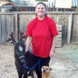Loving Senior Pet Sitter With Many Years Experience Refrences Available Upon Request