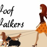 Dog Walker, Pet Sitter in Encinitas