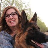 Dog Walker and Pet Sitter Needed ASAP!