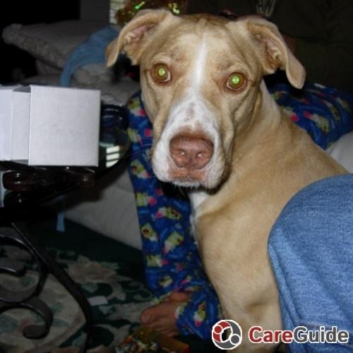 Pet Care Job Michelle N's Profile Picture
