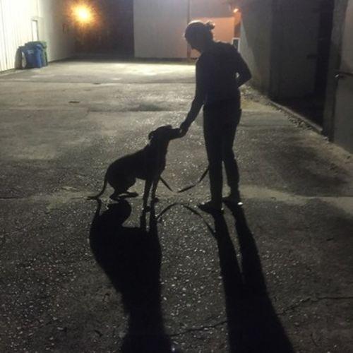 Pet Care Provider Julie K Gallery Image 1