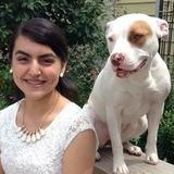 ISU Student-Pet Care Provider
