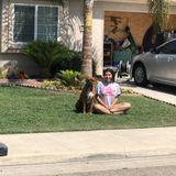 Reliable Dog Sitter in Porterville, California