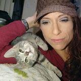 For Hire: Wonderful cat sitter in Minneapolis, St paul, Minnesota