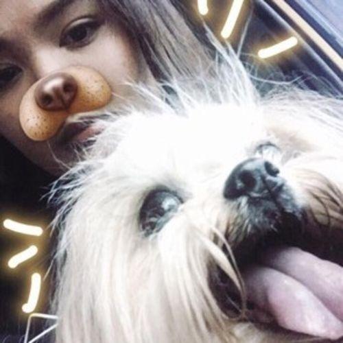 Pet Care Provider aica s's Profile Picture