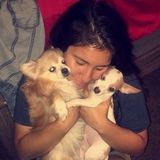 Skilled Pet Care Provider in Northridge
