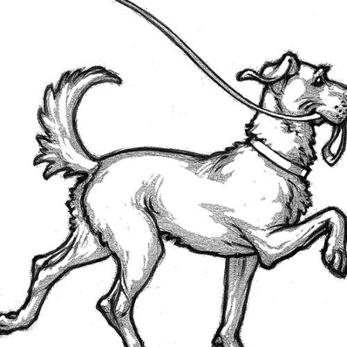 Pet Care Provider Tanya M's Profile Picture