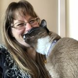 Caring Pet/House Sitter in Novato