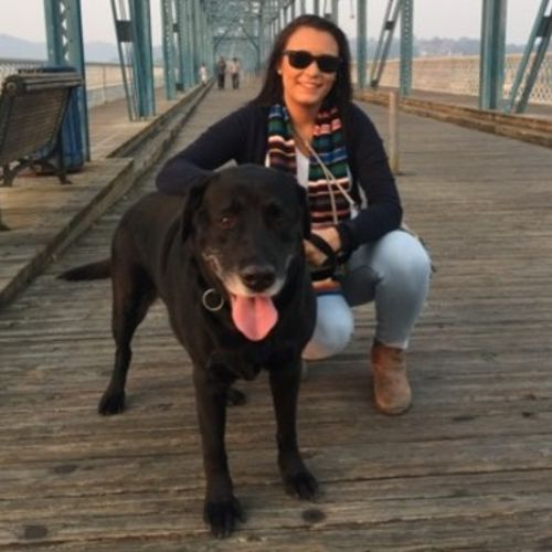 House Sitter Provider Diana Maynez's Profile Picture
