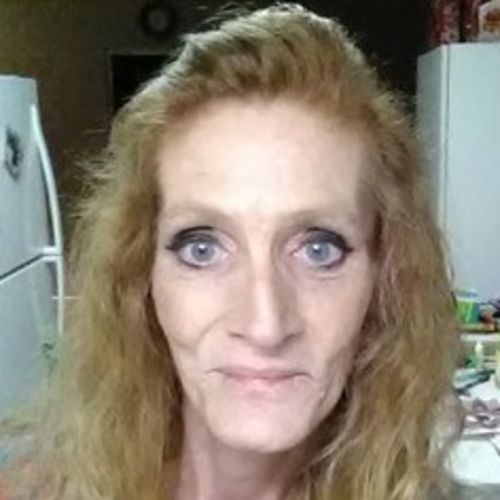 Housekeeper Provider Lynn C's Profile Picture