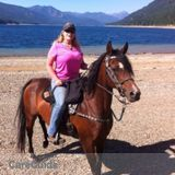 Need a pet sitter close to Cle Elum for dogs and horses