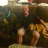 Responsible, Knowledgeable, Loving Retired M.D. Petsitter for Hire