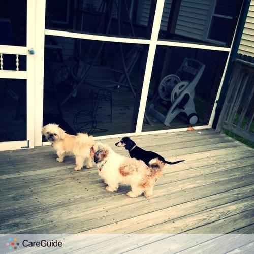 Pet Care Provider Jessica Goode's Profile Picture