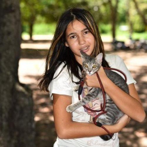 Pet Care Provider Venik Matty Gallery Image 1