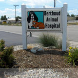 Visit Berthoud Animal Hospital for the Best Treatment for Your Pets Ever