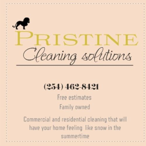 Passionate Housecleaner Available Immediately