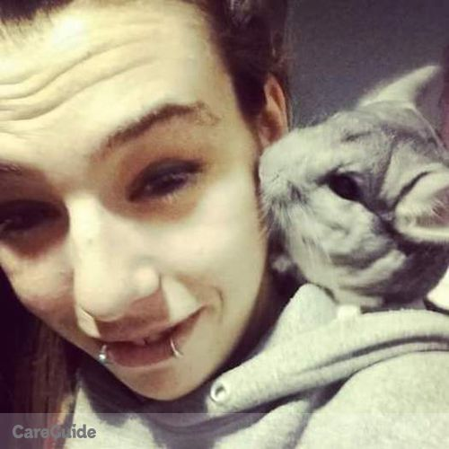 Pet Care Provider Amber Galante's Profile Picture