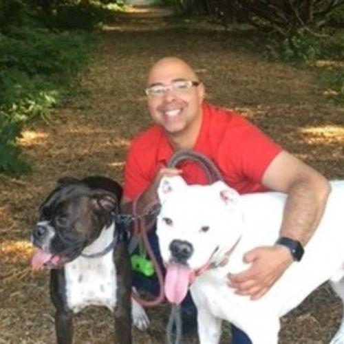 flexible dog walker wanted immediately in the tanyard springs area