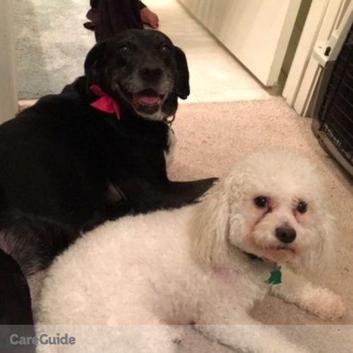 Pet Care Provider Allysa K's Profile Picture
