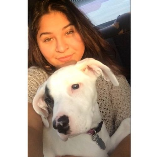 Pet Care Provider Patsy S's Profile Picture