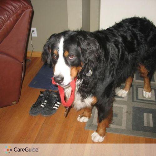 Pet Care Provider Katie Nielsen's Profile Picture
