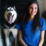 Experienced pet sitter, dog walker, and dog trainer in Hemet, Menifee