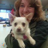 Dog Walker, Pet Sitter in Prineville