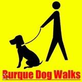 Dog Walker in Albuquerque