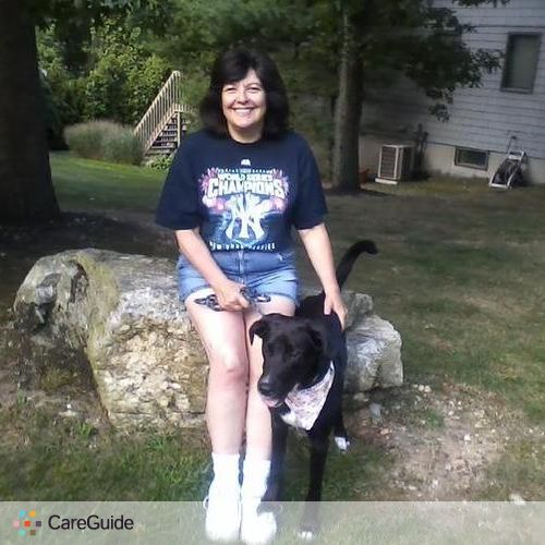 Pet Care Provider Jan Cicchetti's Profile Picture