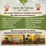 Excellent Child Care Provider Here At Carols Little Tree House !
