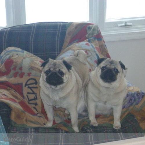 Pet Care Provider Patricia Kelley's Profile Picture