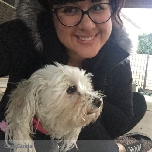 Pet Care Provider Mariah Preciado's Profile Picture