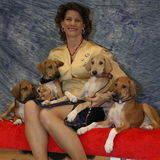 Amarillo Dog/Cat Sitter/Walker Interviewing For Work in Texas