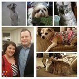 Dog Walker, Pet Sitter in Altamonte Springs