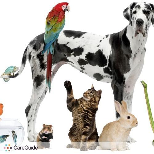 Pet Care Provider Andrew Frederick's Profile Picture