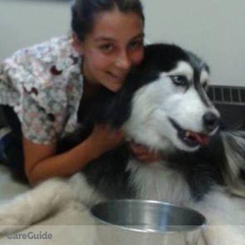 Pet Care Provider Alana C's Profile Picture